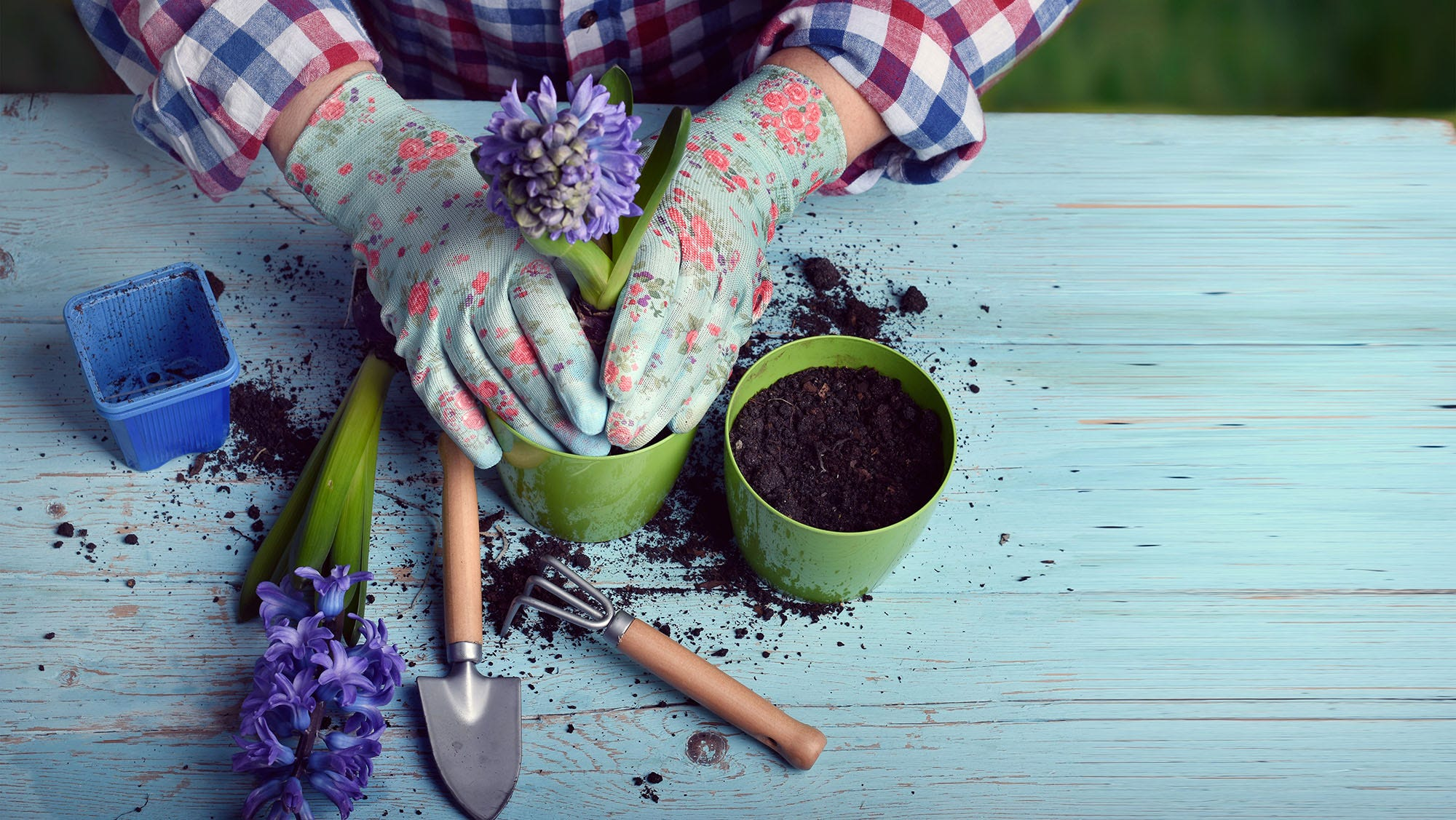 With The Arrival Of Spring Comes A Ton Of Gardening Chores As Plants, Well,  Spring Back To Life. Not All Tasks Need To Be Done The Old Fashioned Way  Though.
