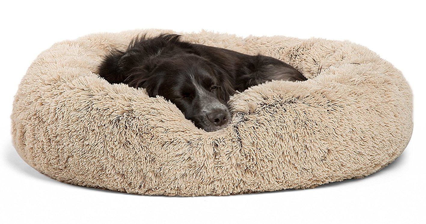The 6 Best Dog Beds For Dogs Of All Sizes Review Geek
