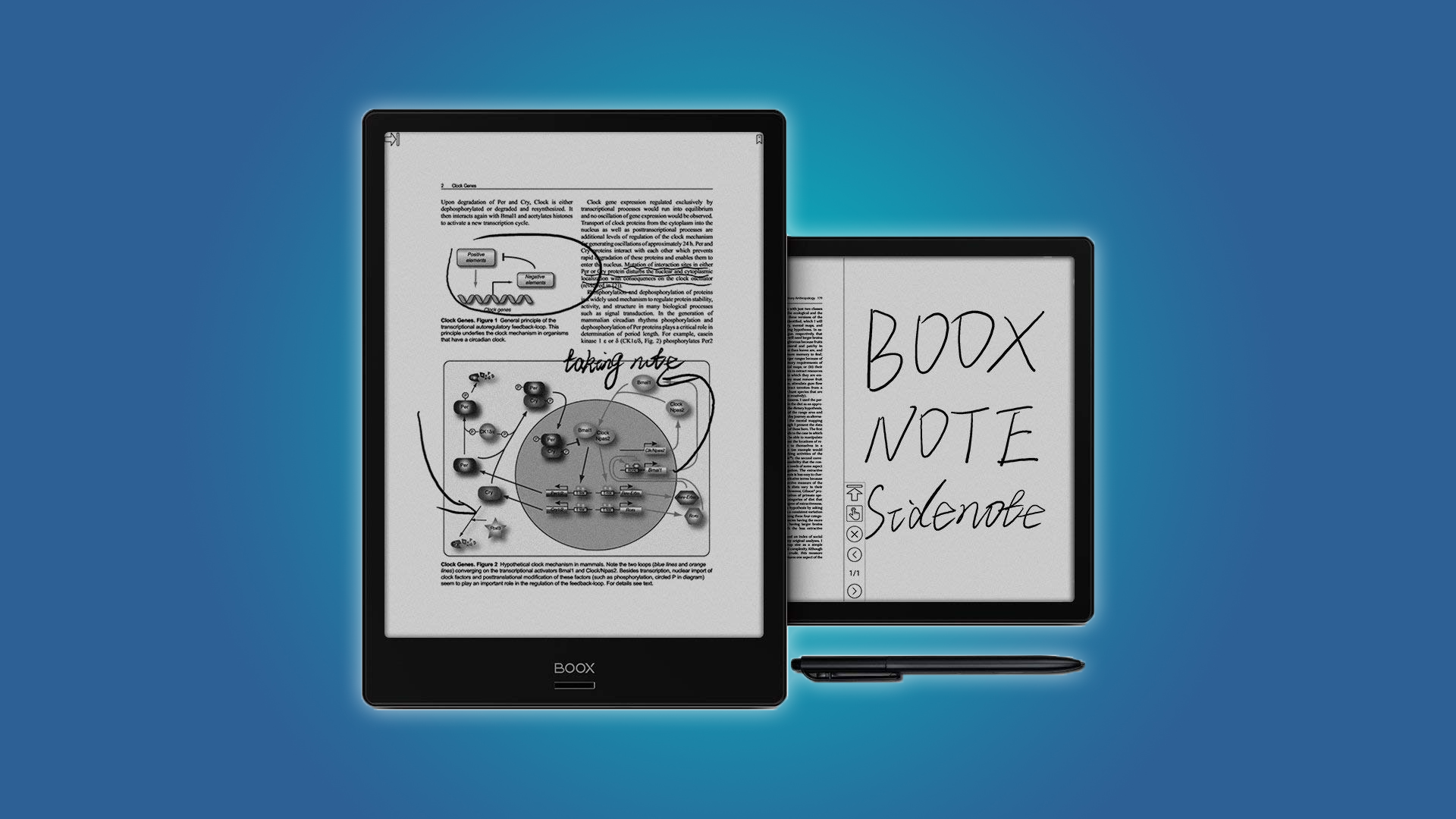 The Boox Note