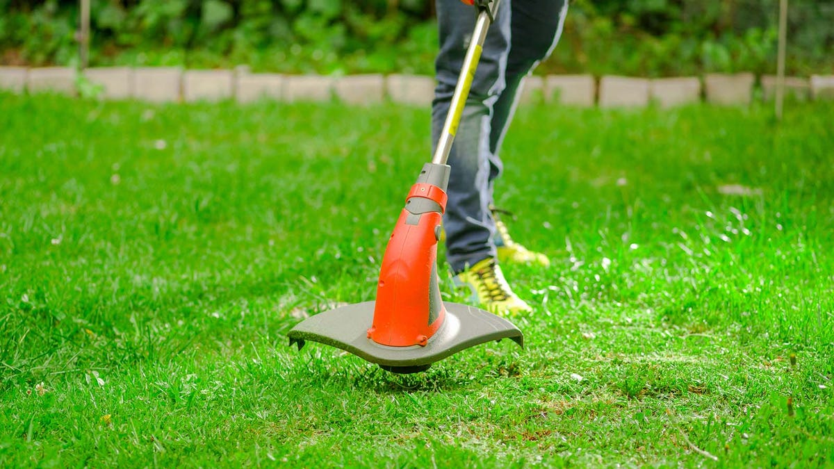 Person using an electric string trimmer to weed whack and trim grass
