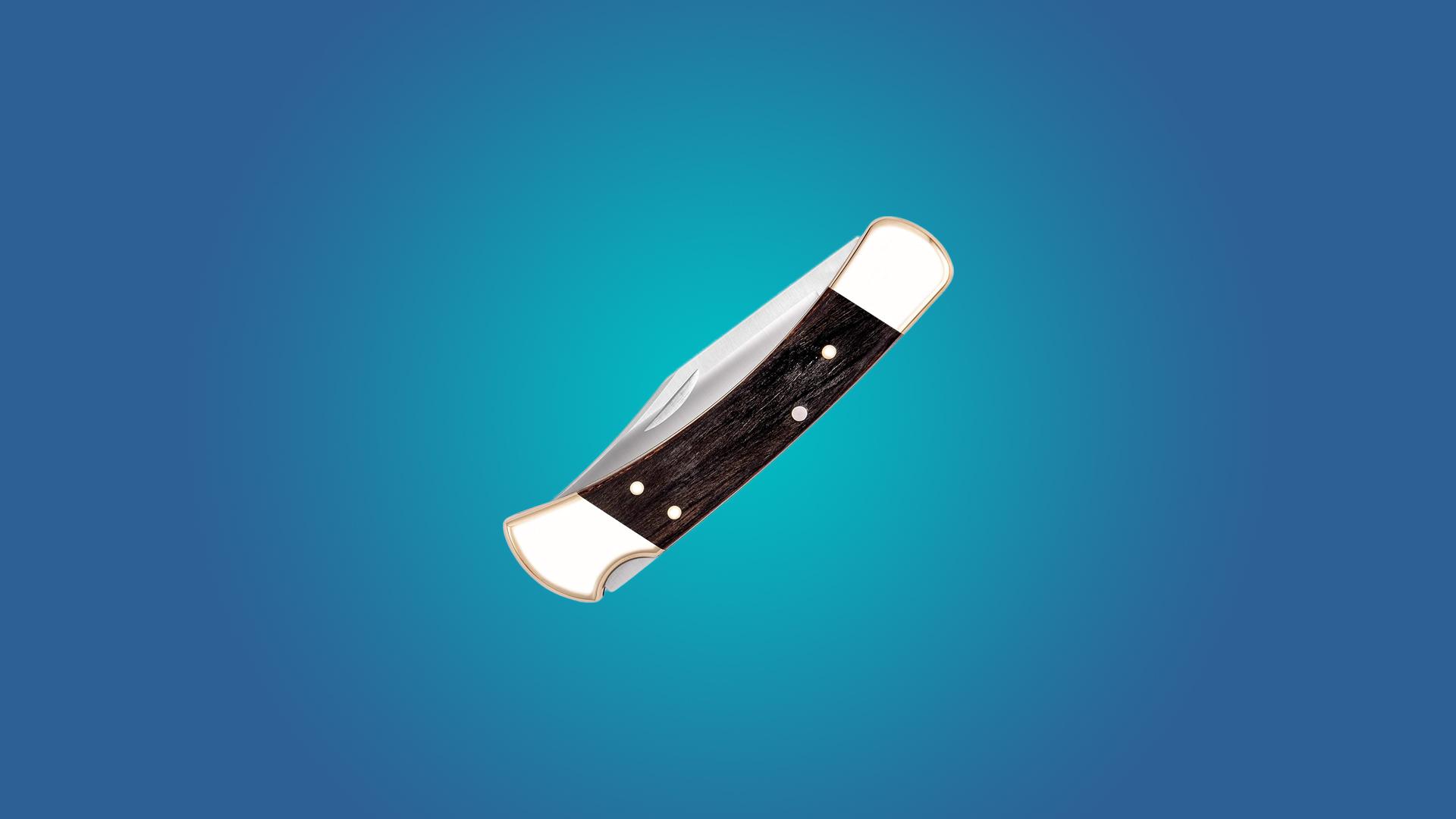 The Buck 110 Classic Folding Knife