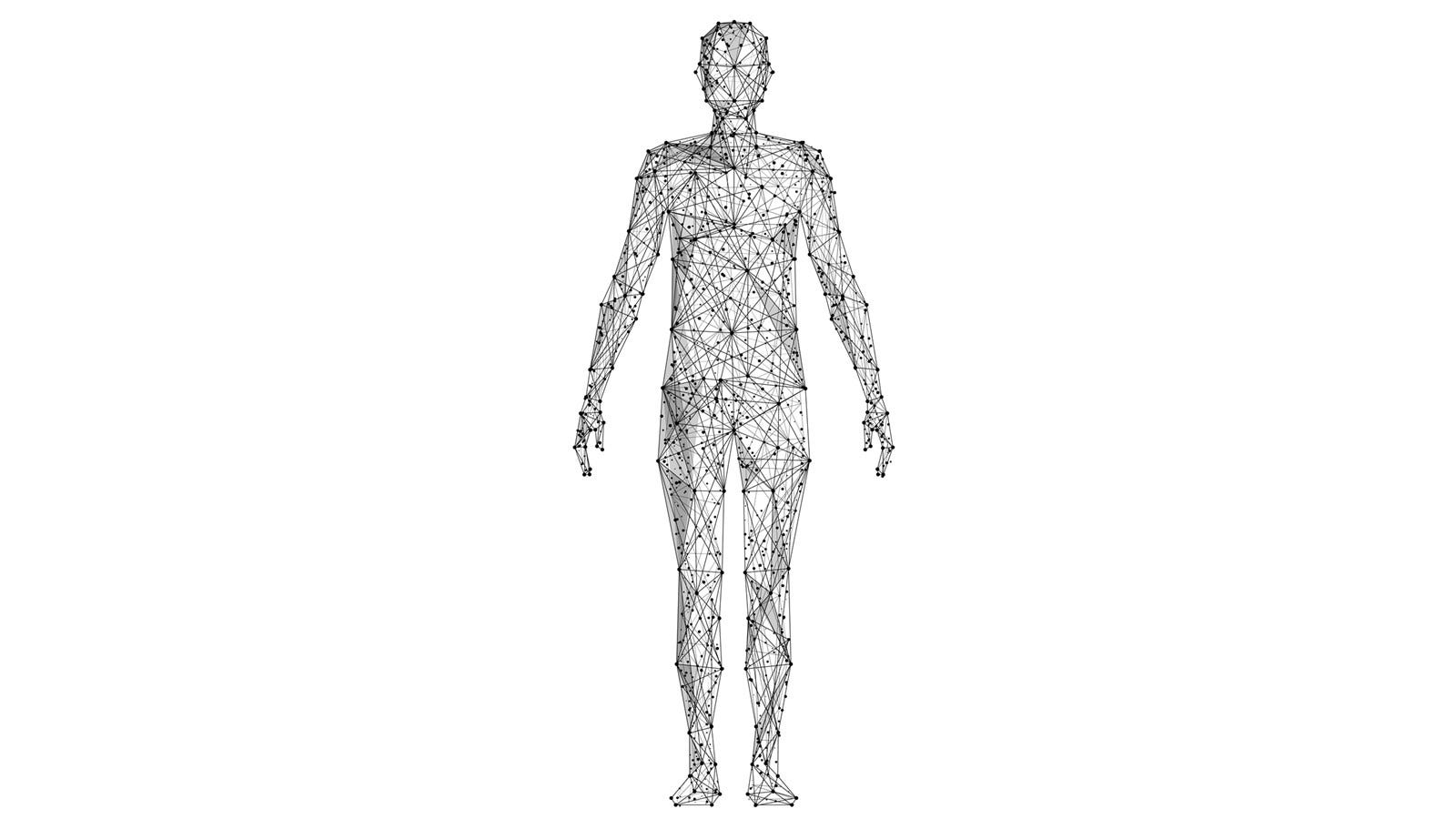 Thin lines and dots all over a drawing of a human body.