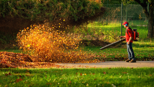 4 Leaf Blowers That'll Blow Your Mind (and Leaves)
