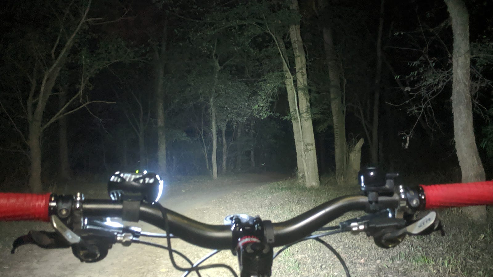 The handlebars of a bike with a light attached, illuminating dark woods at night.