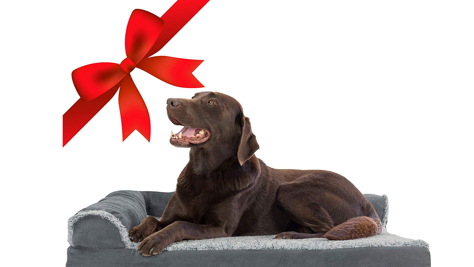 The Furhaven Orthopedic Pet Bed