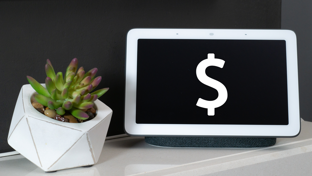 A Google Nest hub with a dollar sign on the display next to a plant.