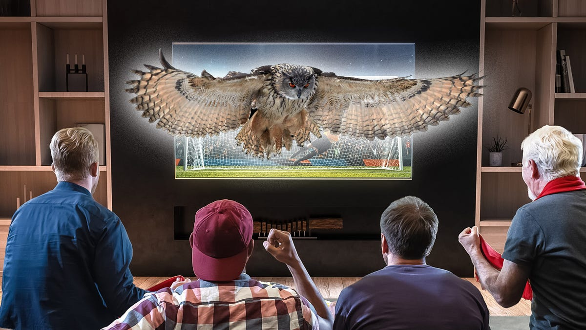 A group of men watching the superb owl.