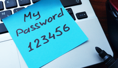 The 4 Best Password Managers of 2020