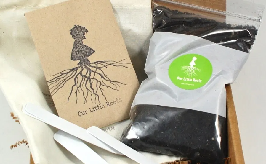Our Little Roots monthly subscription box herb seeds fruit seeds flower seeds vegetable seeds seasonal seeds seasonal plants
