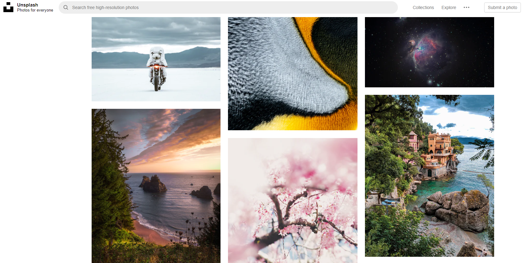 Unsplash stock images