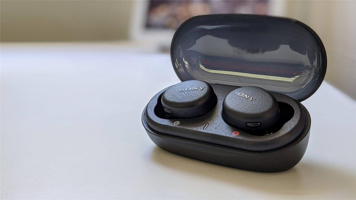 Sony's Extra Bass true wireless earbuds in the case