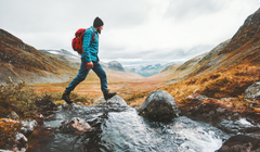 Take the Trail Less Traveled with These Hiking Apps