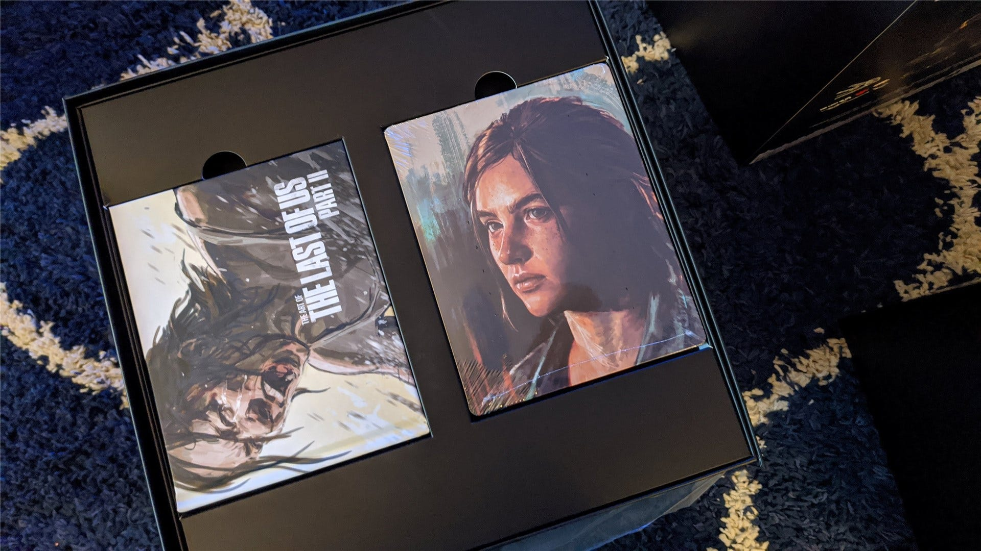 The Last of Us Part II Collector's Edition mini art book and SteelCase