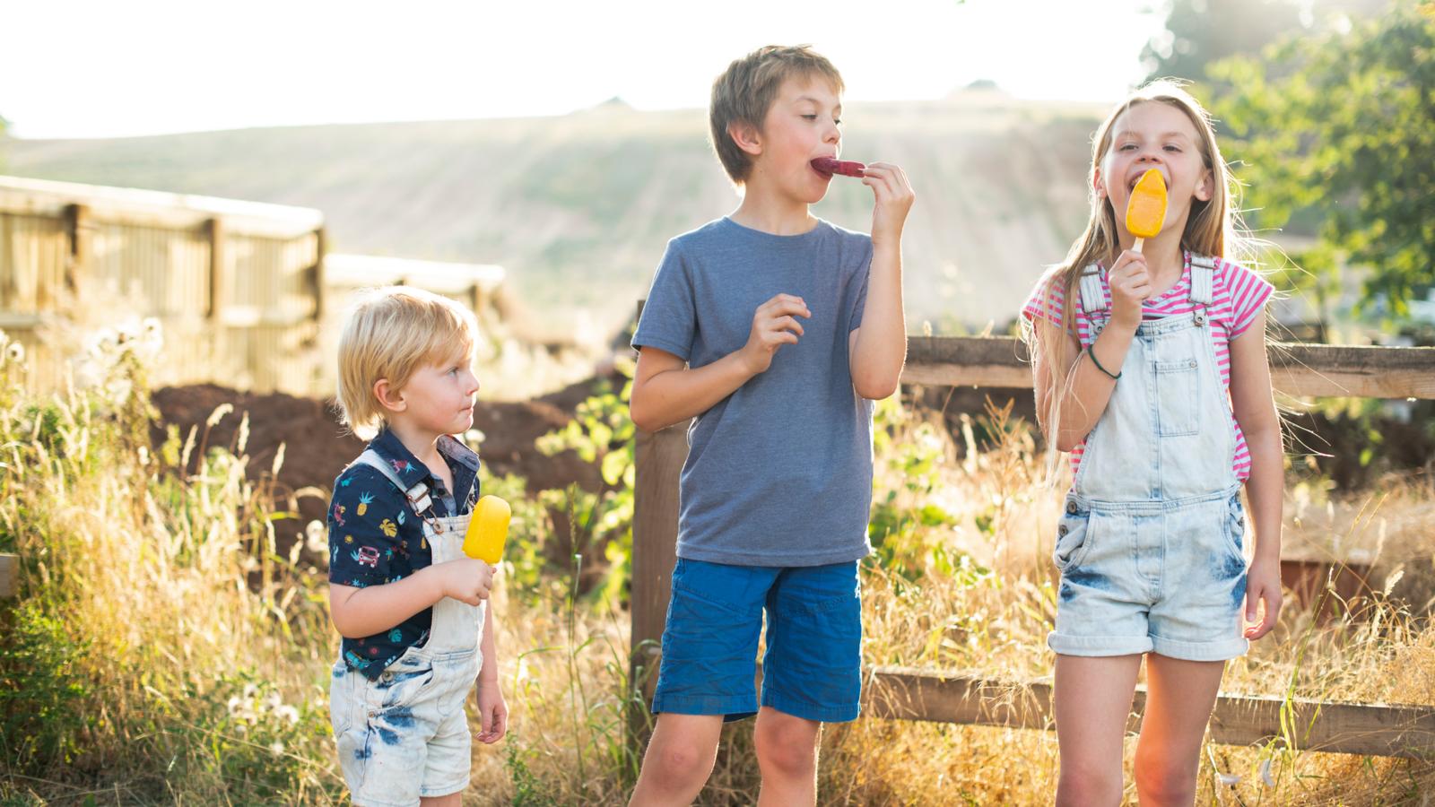 Kids eating ice popsicles outside