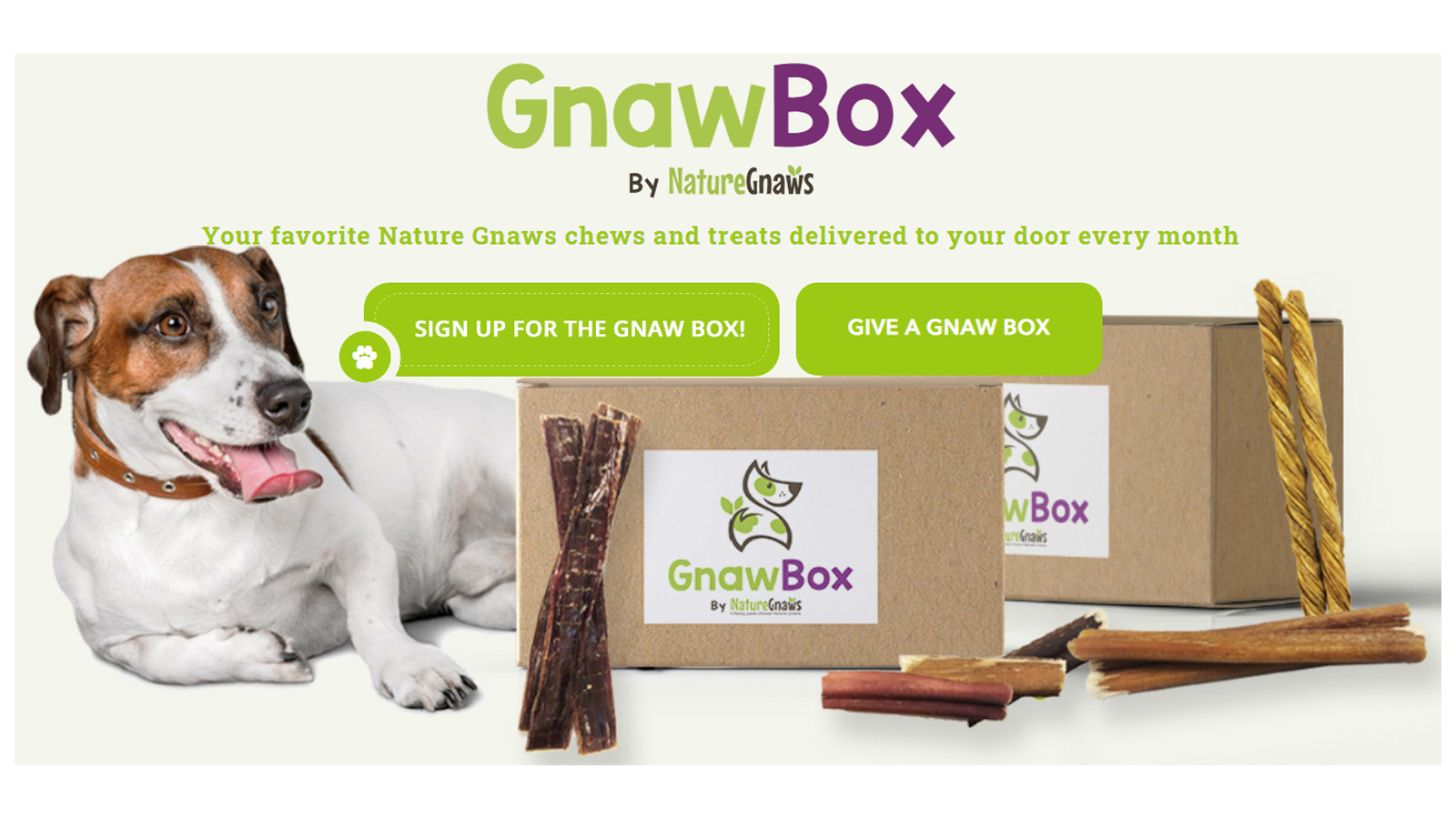 GnawBox best subscription box for natural dog treats and chews