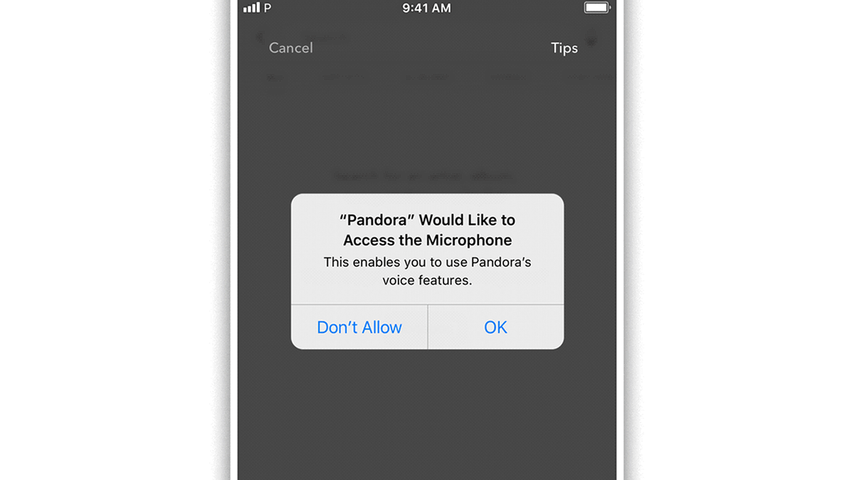 An illustration of Pandora asking for microphone access.