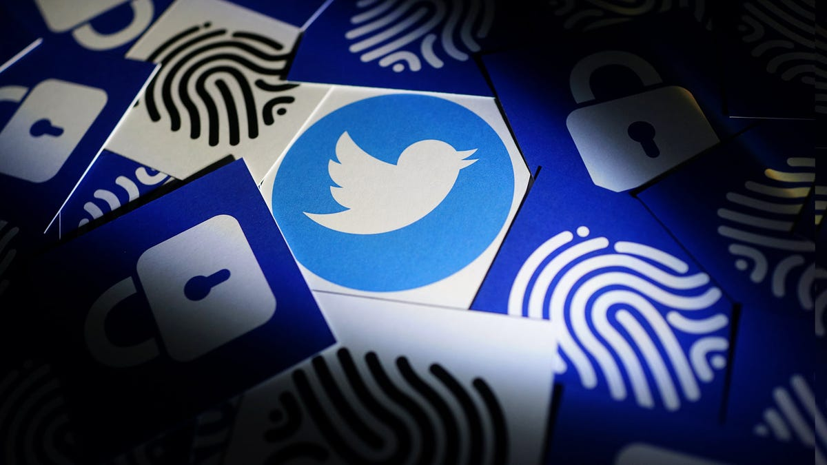 Twitter logo and locks and fingerprint icons