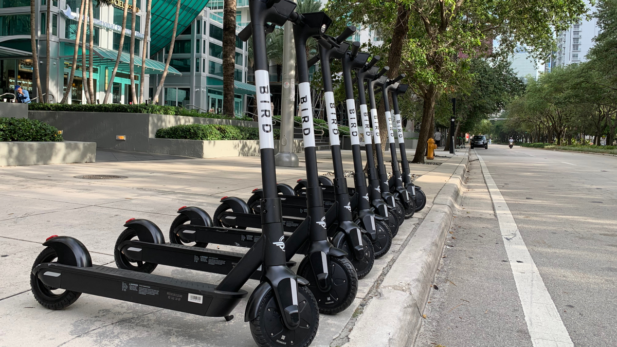 Group of Bird electric scooters parked on curb