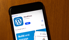 [Updated X2] Apple Cut off WordPress App Updates Because It Wants a Cut of Domain Sales