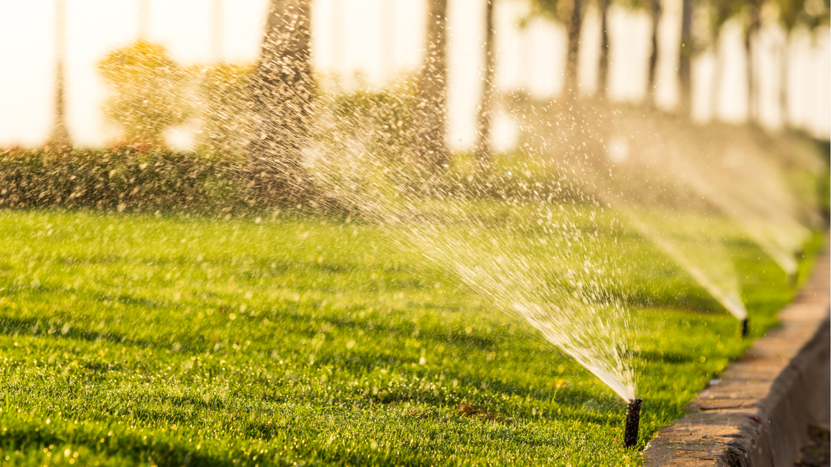 Sprinkler heads watering the bushes and grass in a garden