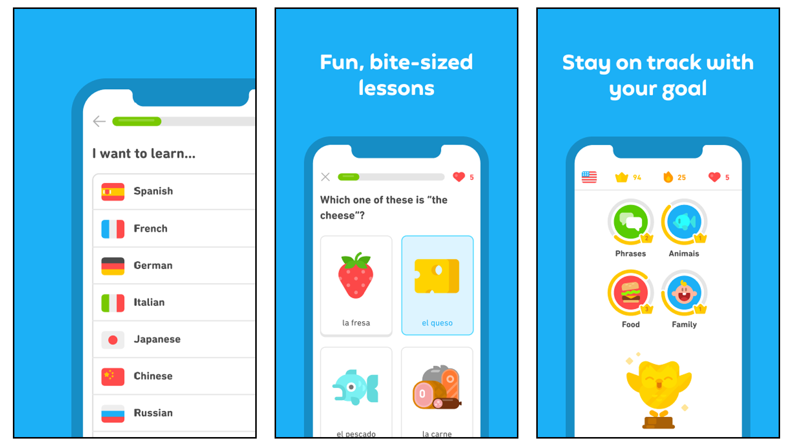 Use Duolingo to help you study for your languages courses, with short lessons and vocab help