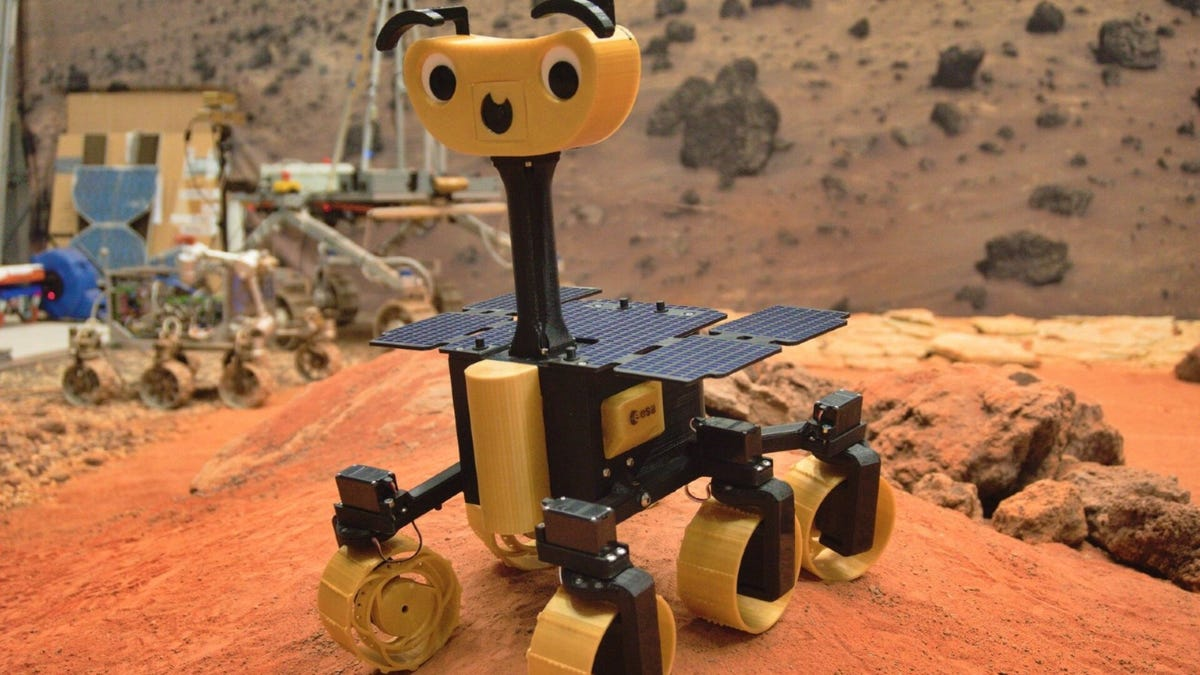 An ExoMy Rover in the middle of a desert.