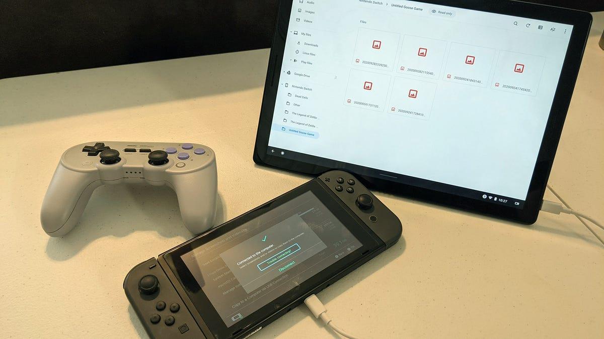 Nintendo Switch USB transfer