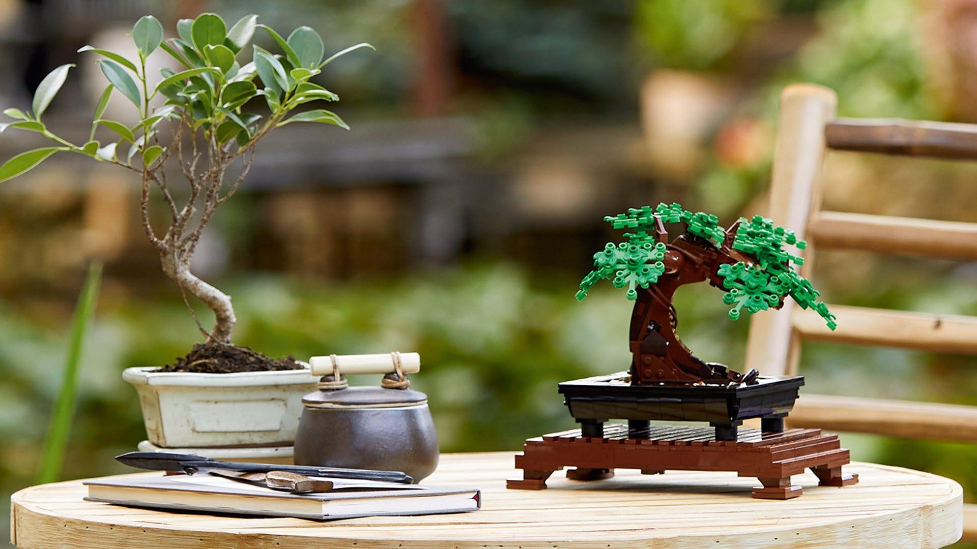 A LEGO bonsai tree next to a real bonsai tree.