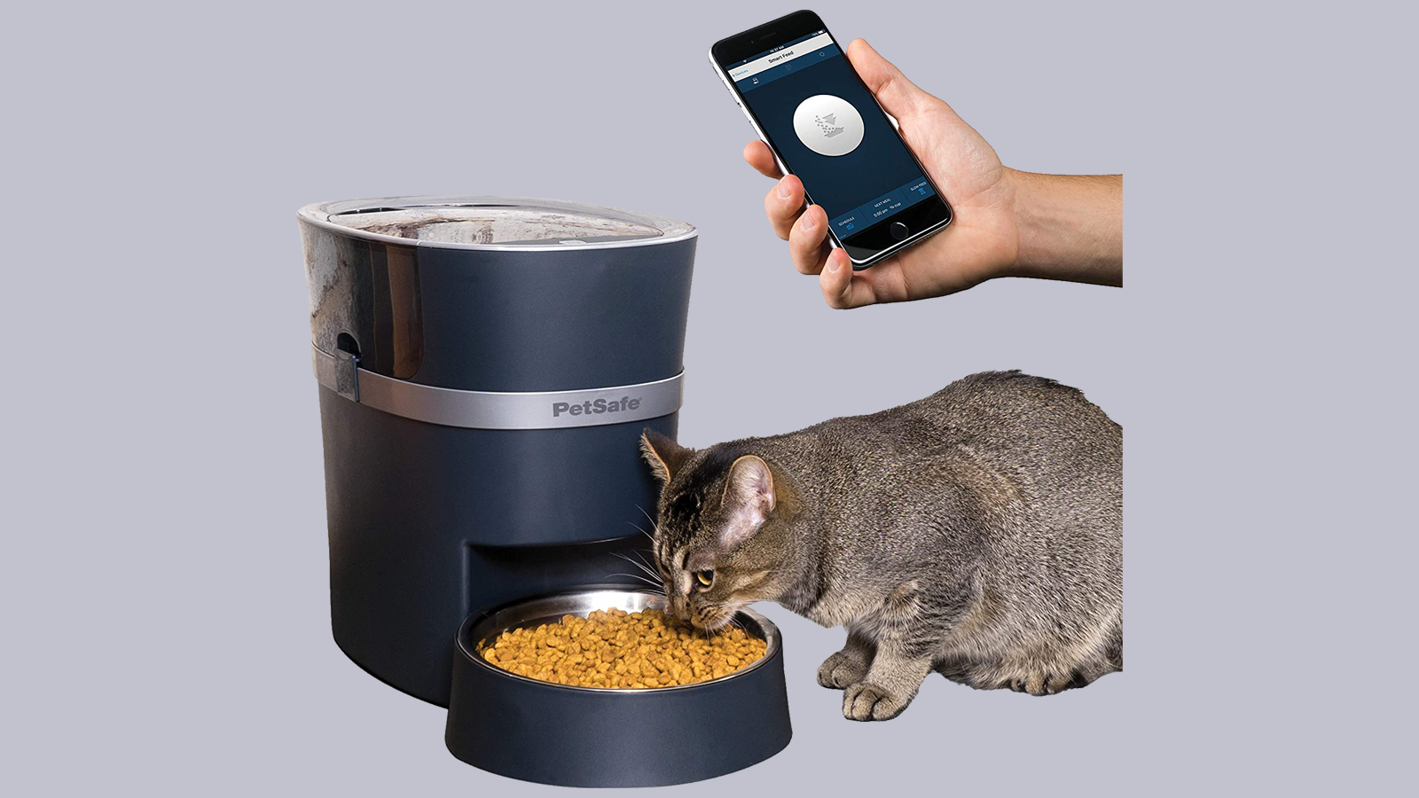 PetSafe Smart Feed Pet Feeder with cat eating and a floating hand holding a smartphone with the companion app open