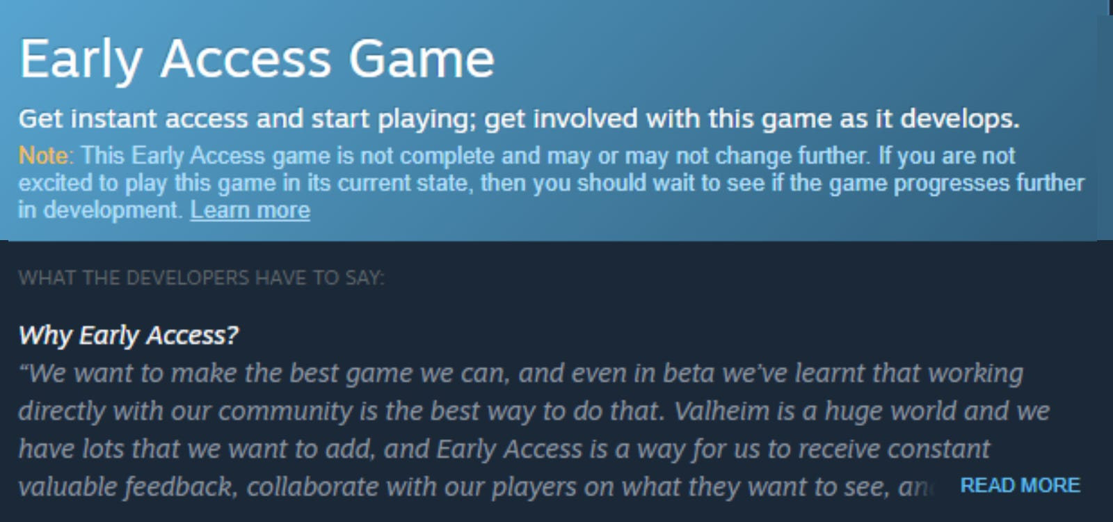 Steam's Early Access warning on 'Valheim'