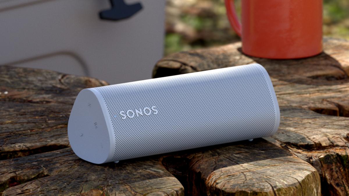 A Sonos Roam speaker on a log, next to a mug.