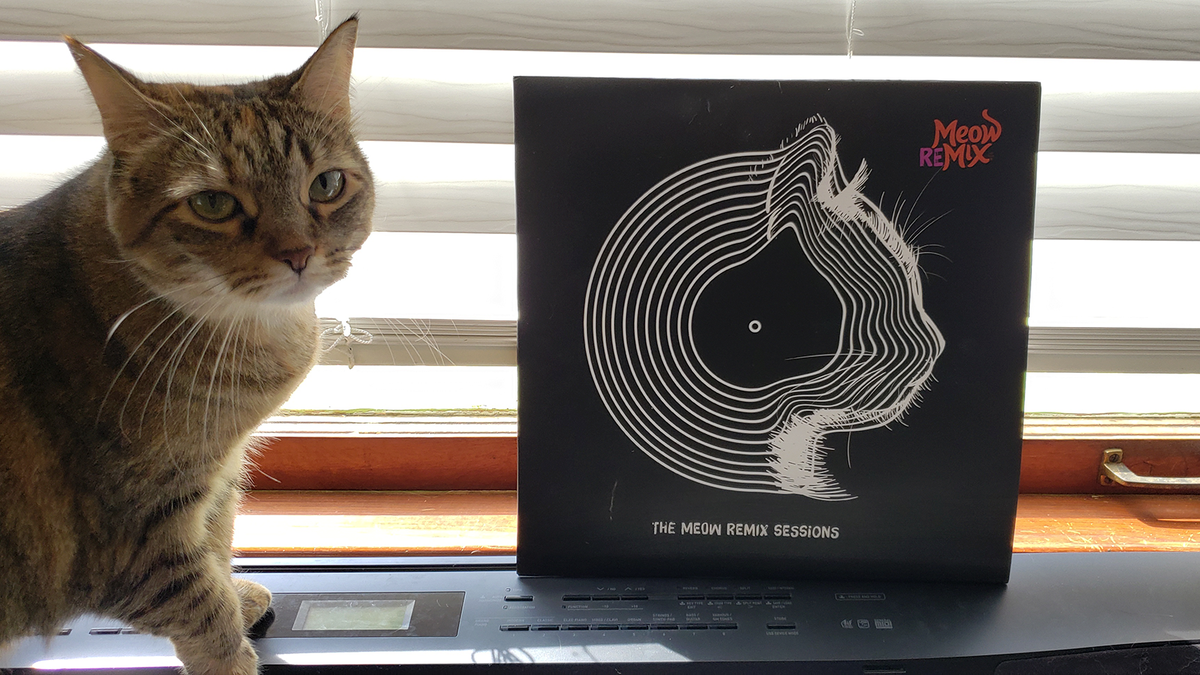 My cat with the Meow Mix ReMix LP