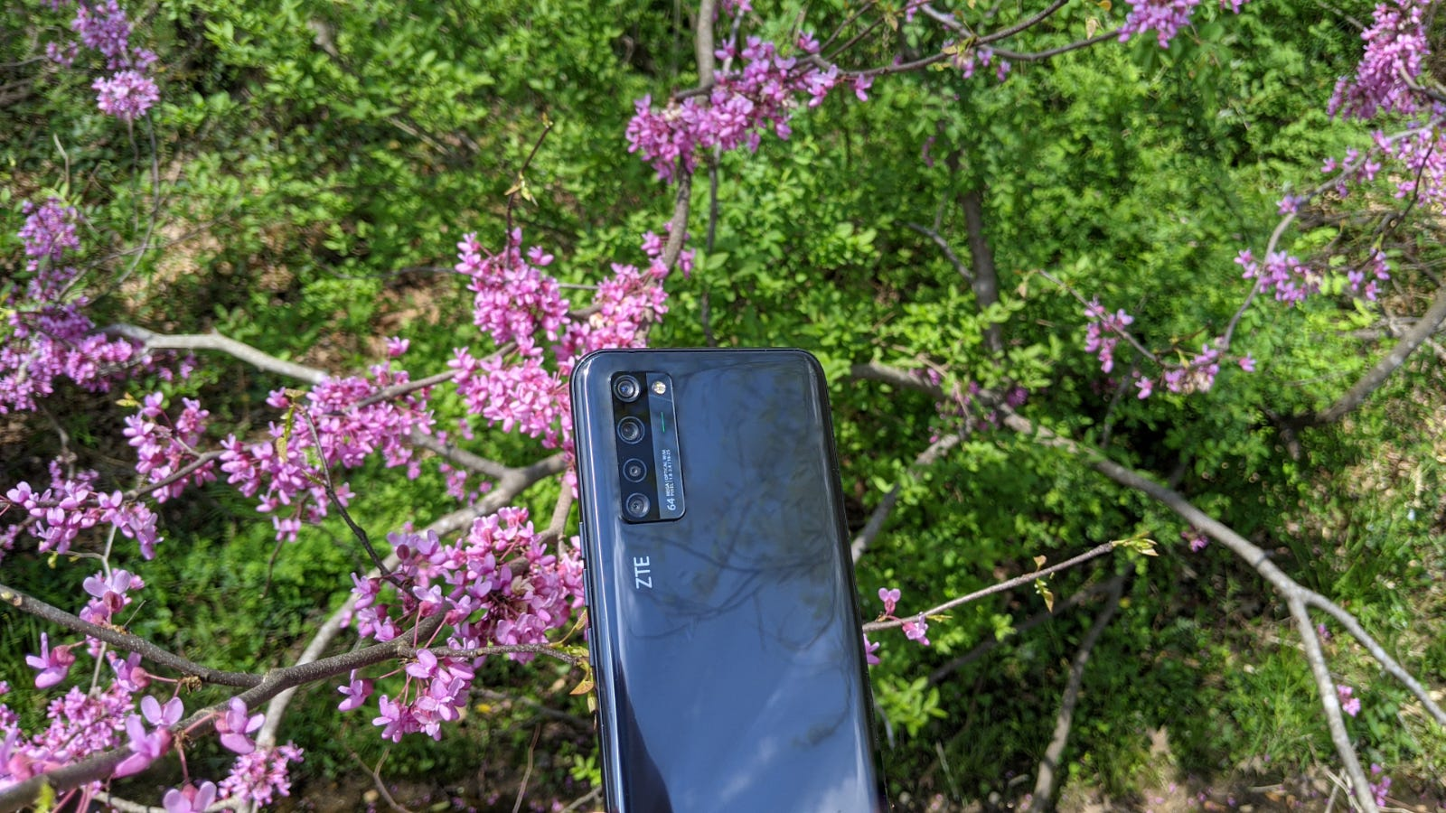 ZTE Axon 20 5G held up against flowering plant