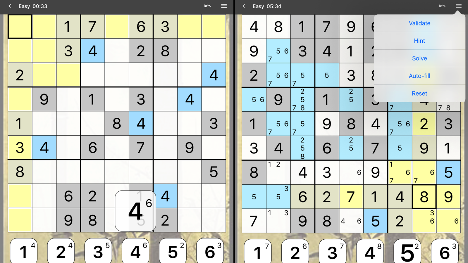 Sudoku puzzle in progress, and in-game options menu