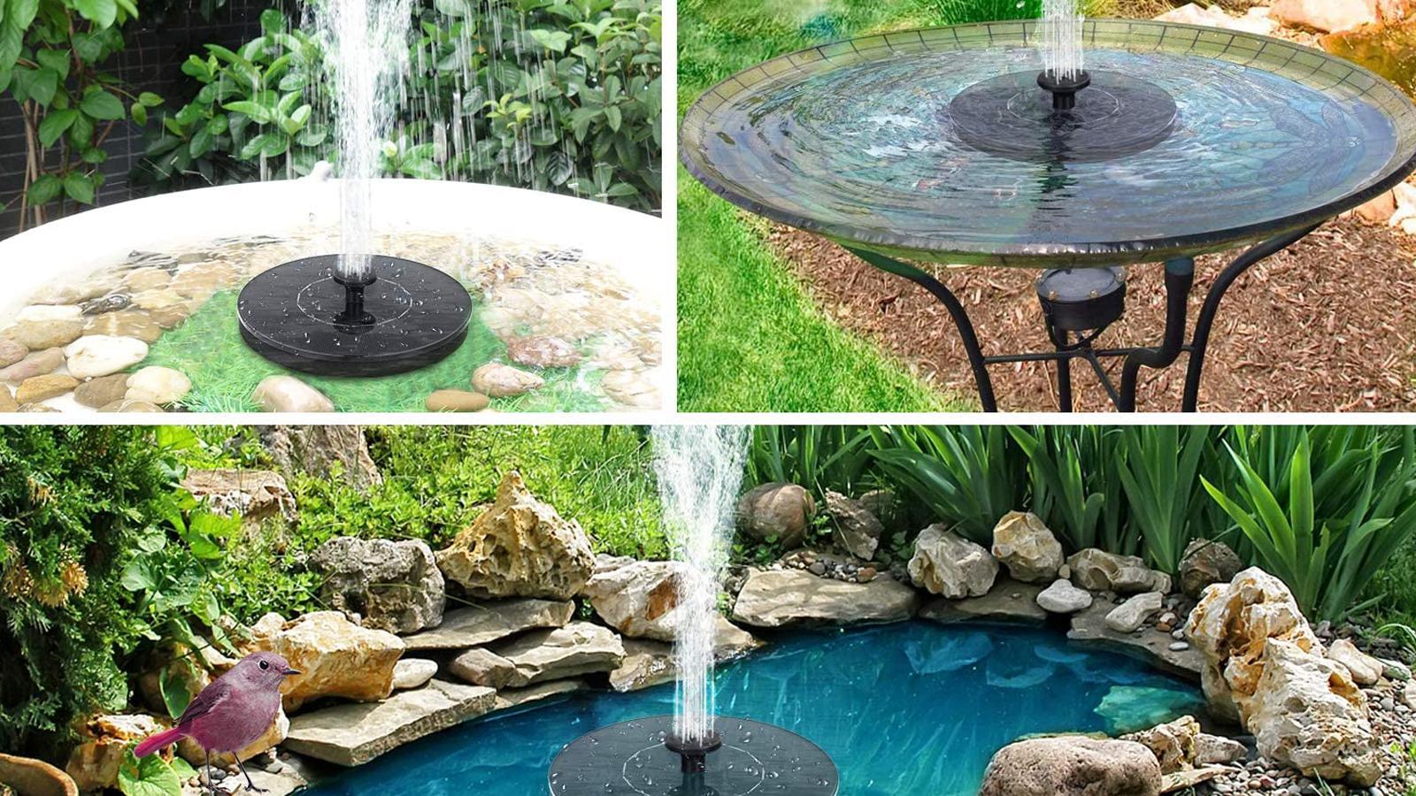 Bring Hummingbirds to Your Yard with This Solar Bird Bath Fountain