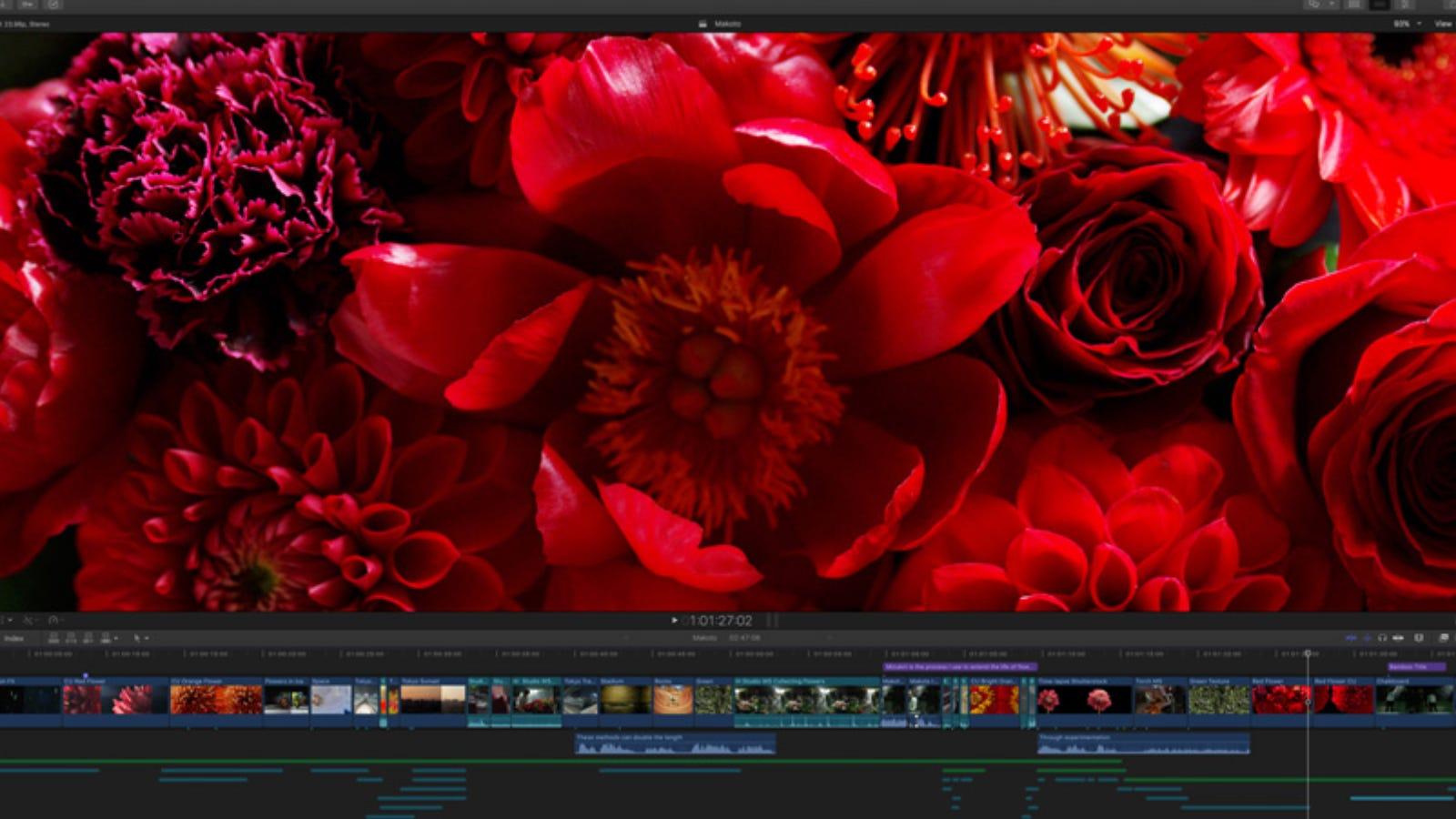 Final Cut Pro main editing window