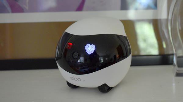 Ebo SE Review: A Cute, Fun, and Misguided Toy for Cat Owners