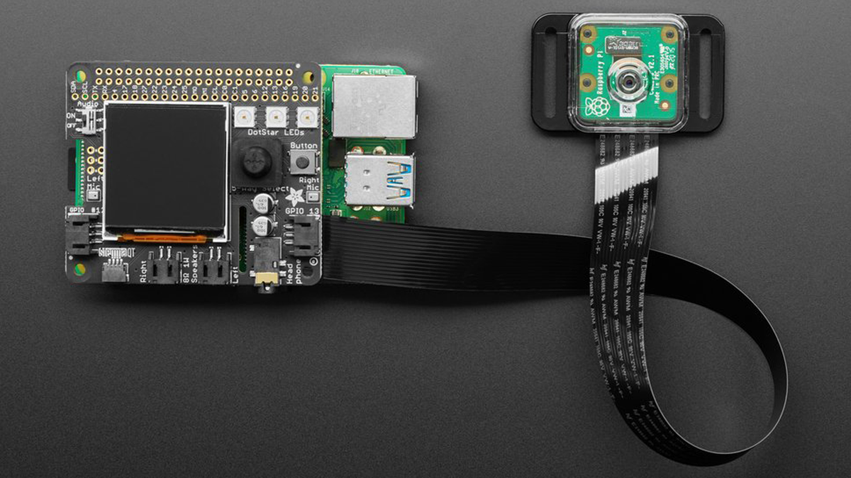 Adafruit developed this kit especially for the BrainCraft HAT to be used with Microsoft Lobe on Raspberry Pi