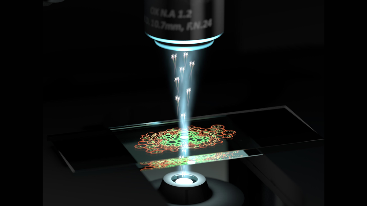 An illustration of a quantum microscope examining cells.