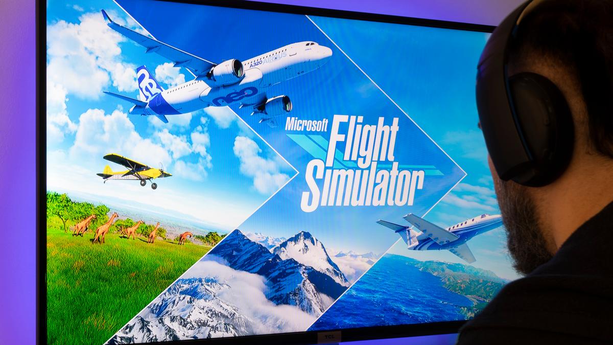 Person playing Microsoft Flight Simulator