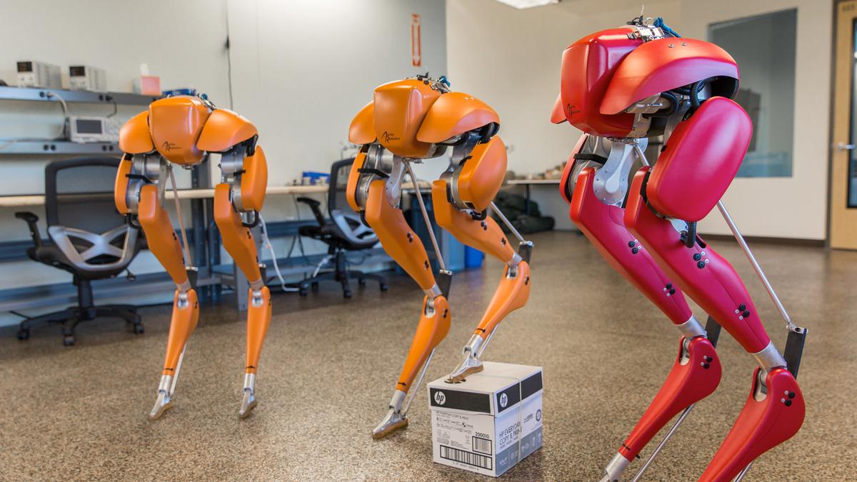 Agility Robotics' Cassie bipedal robot.