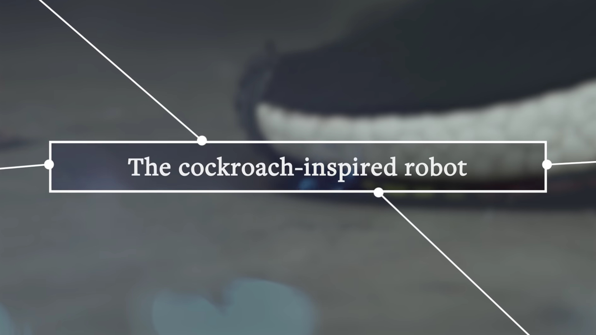 """Title card from the included video that says """"The cockroach-inspired robot"""""""