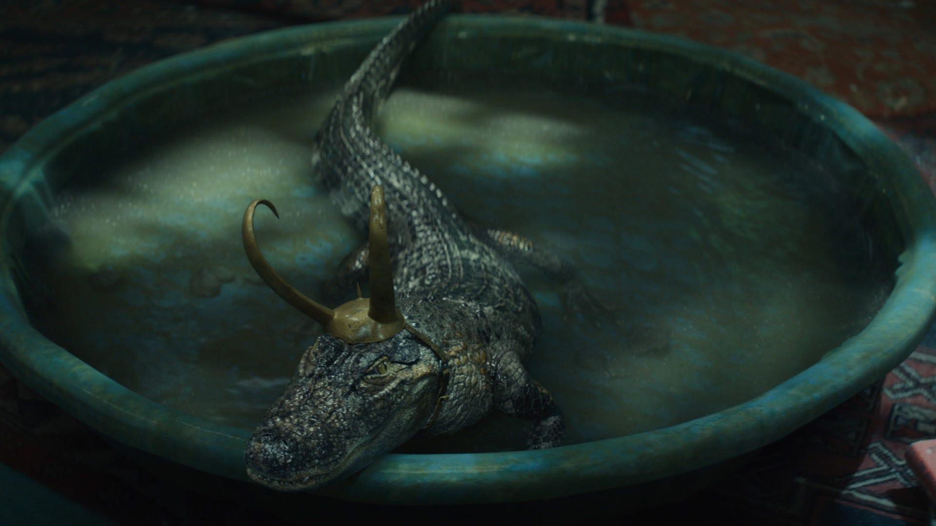 An Alligator Loki