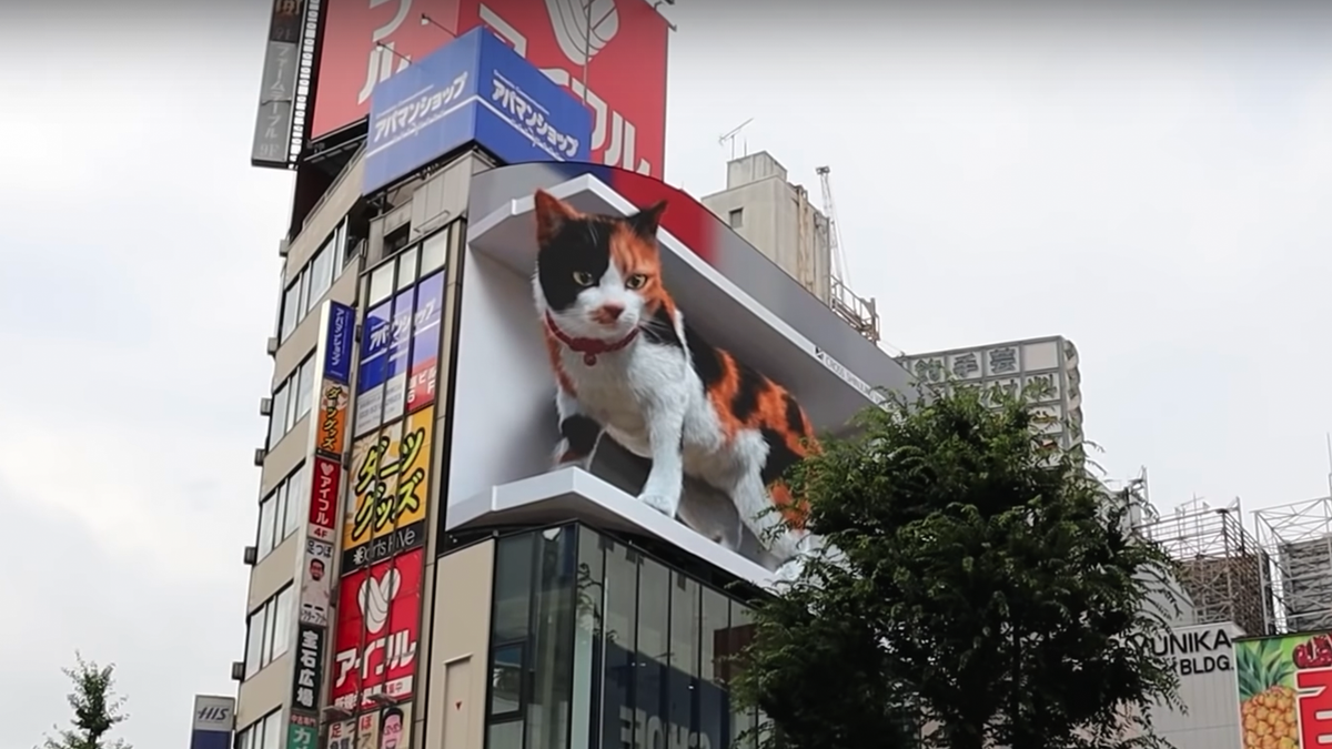 The 3D cat bilboard in Tokyo.