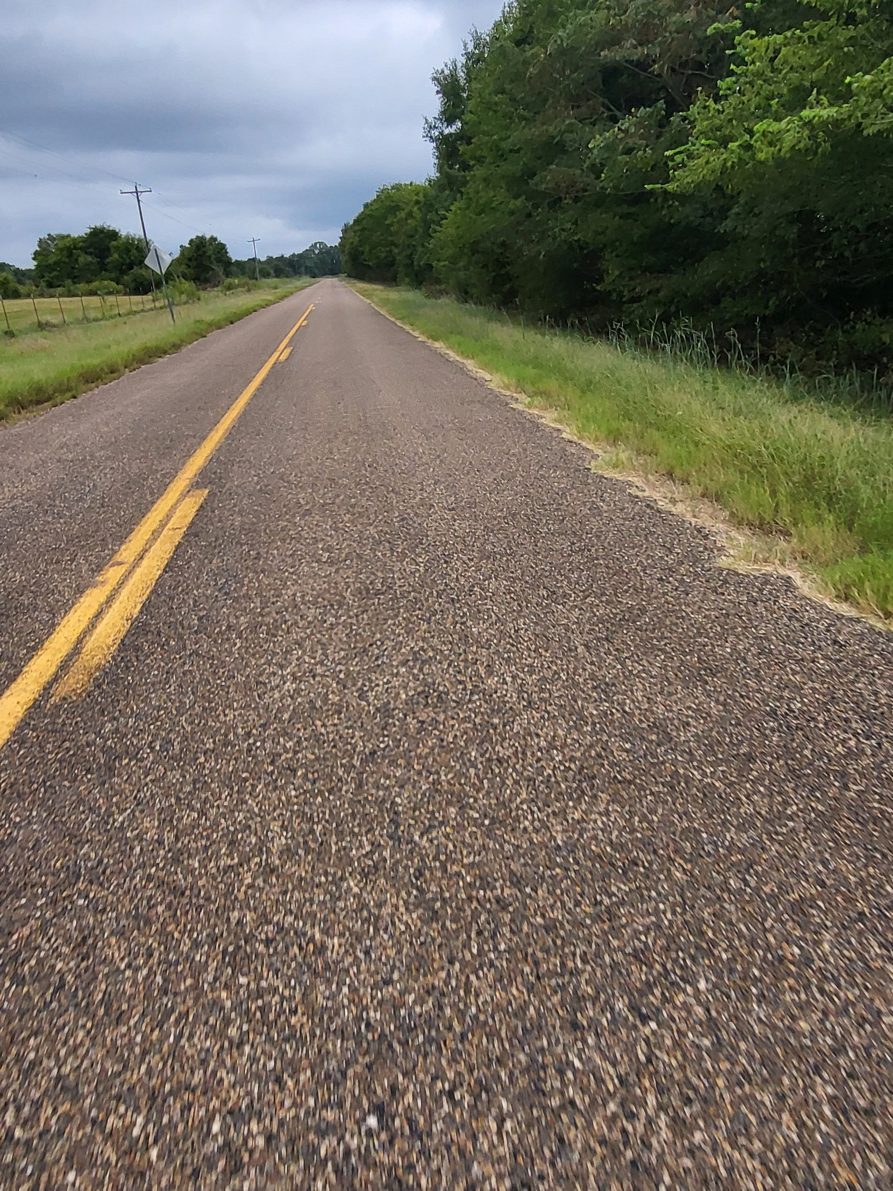 A shot of the road, taken while riding