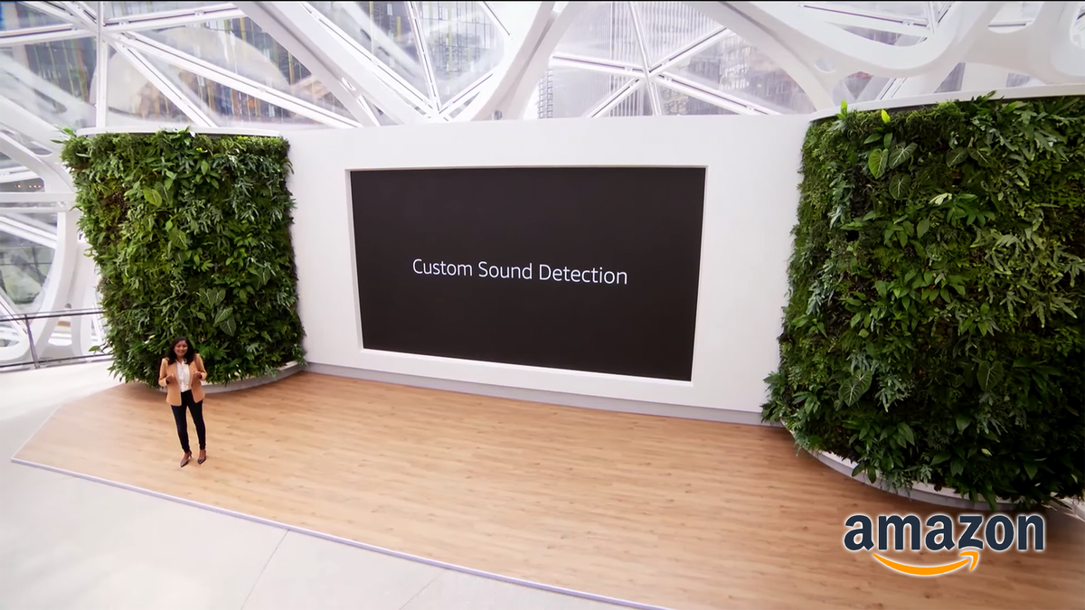 The Custom Sound Detection slide at Amazon's Fall 2021 event.