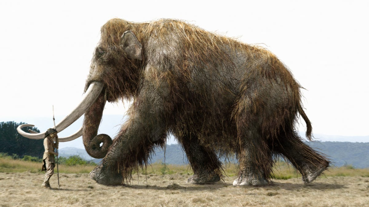 Woolly Mammoth in movie