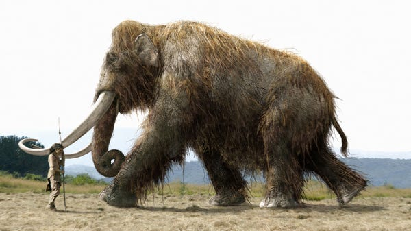 Scientists Get $15 Million to Try and Resurrect the Woolly Mammoth, but Why?