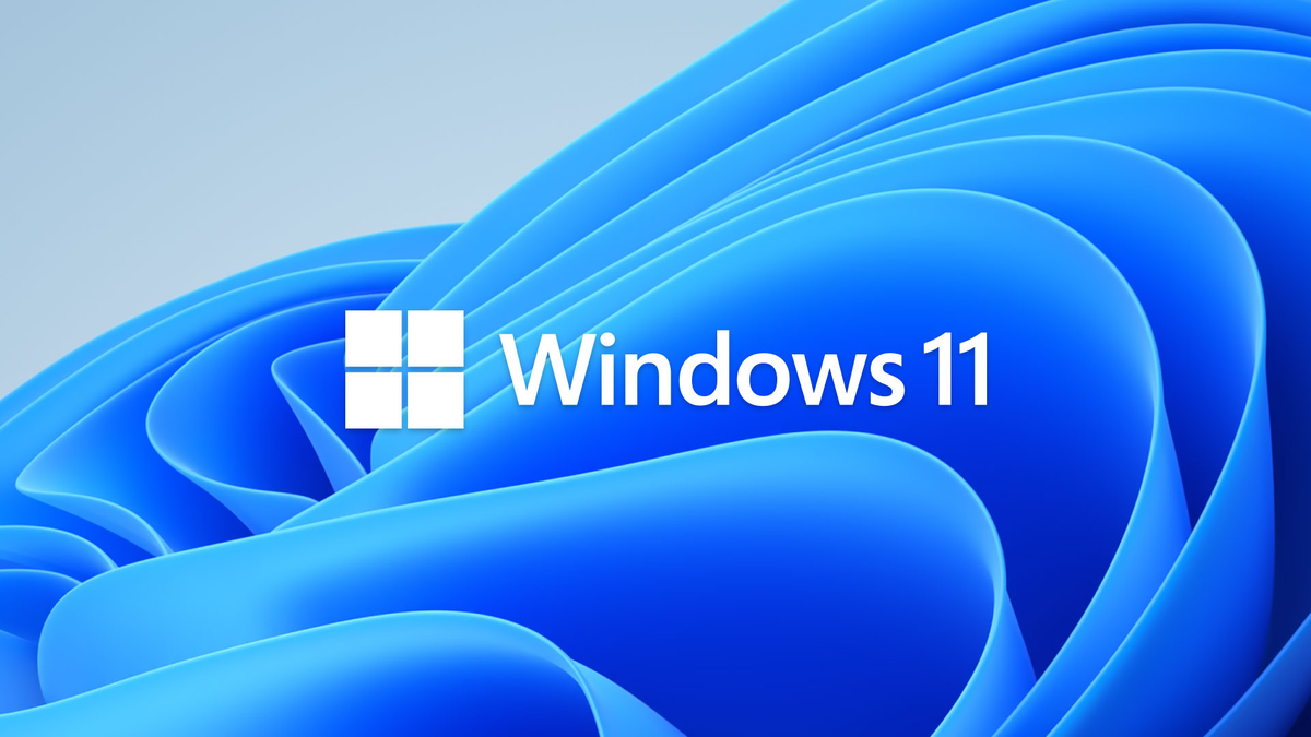 Windows 11 logo on the Windows 11 default wallpaper.