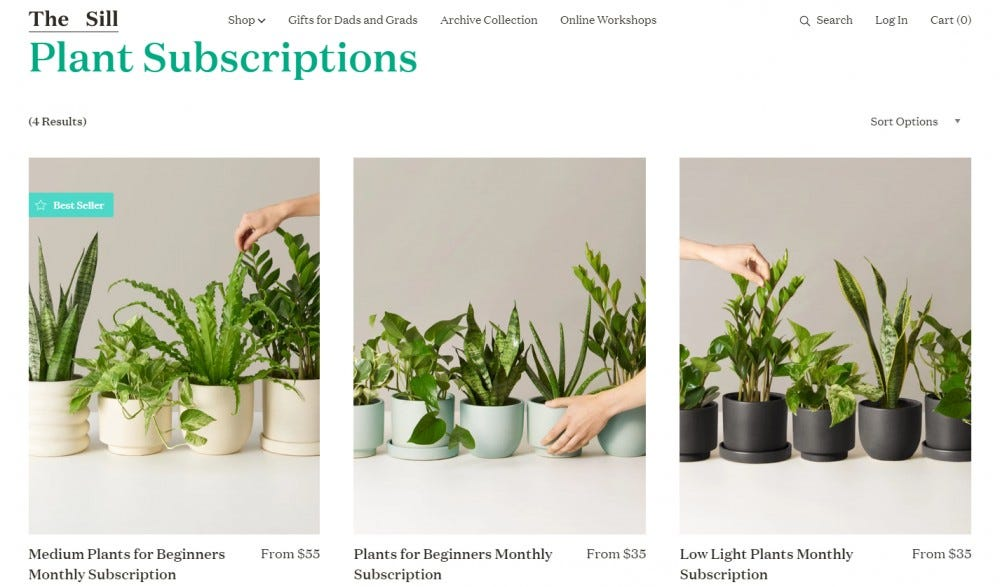 The Sill plant subscription box monthly small plants medium plants low light plants pet friendly plants houseplants